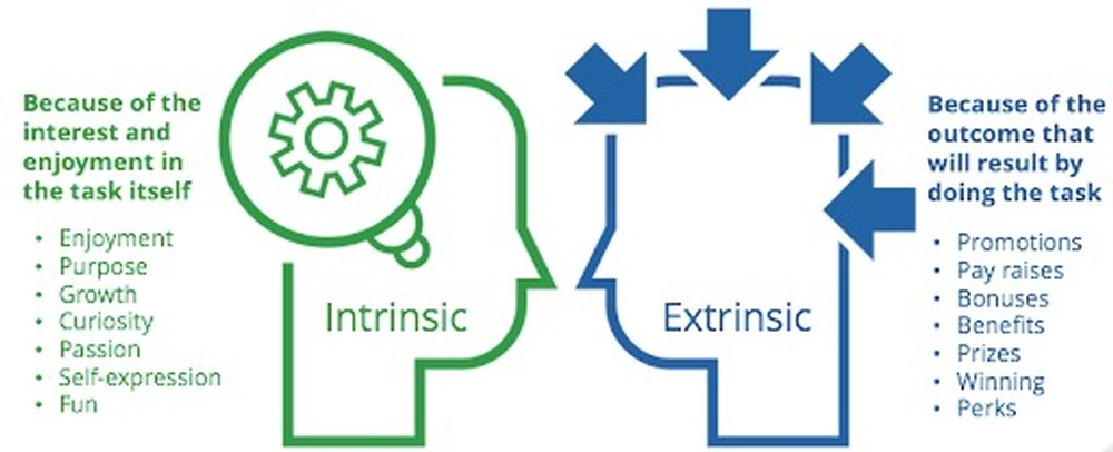 Intrinsic Vs. Extrinsic Motivation Why We Do What We Do